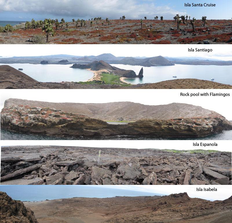 02-03-landscapes
